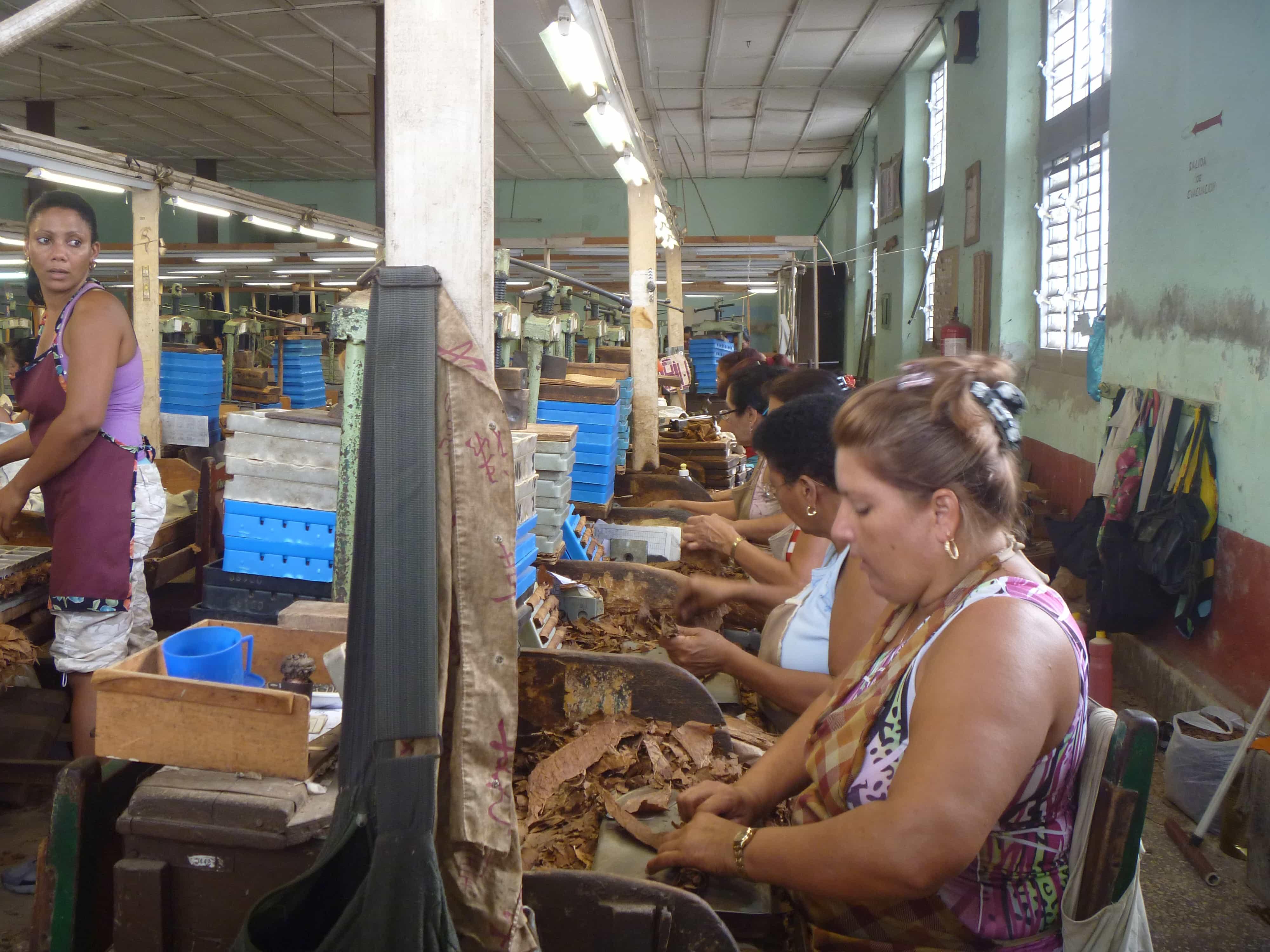 cuba-sigaren-rollen-fabriek