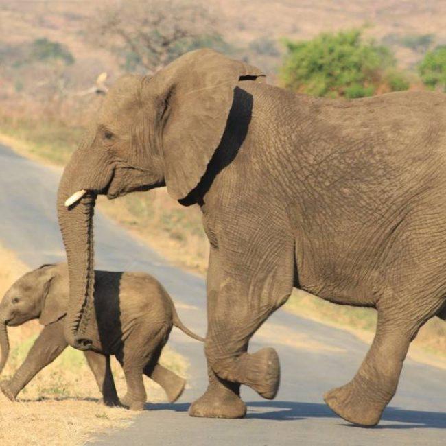 de-verborgen-pareltjes-van-zuid-afrika
