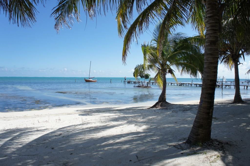 Caye Caulker Ki Kolker, Caye Caulker, caya island, belize, Belize Caye Caulker, midden amerika, centraal amerika, eiland midden amerika, eiland centraal amerika, eiland belize, strand belize, snorkelen belize, snorkelen Caye Caulker, duiken Caye Caulker, duiken belize, Caribische eiland, Blue Hole, Blue Hole Belize, Blue Hole Caye Caulker, snorkertour Belize, snorkertour Caye Caulker, Shark Ray Alley, Shark Ray Alley Belize, Shark Ray Alley Caye Caulker, Riksja Travel, Mexico online, Travel Rumors, mooiste eilanden ter wereld, mooiste eiland caribisch gebied, mooiste caribische eilanden, bounty eilanden, de mooiste eilanden, de mooiste bounty eilanden