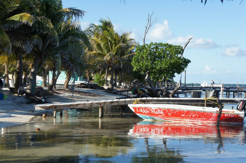 Caye Caulker Ki Kolker, Caye Caulker, caya island, belize, Belize Caye Caulker, midden amerika, centraal amerika, eiland midden amerika, eiland centraal amerika, eiland belize, strand belize, snorkelen belize, snorkelen Caye Caulker, duiken Caye Caulker, duiken belize, Caribische eiland, Blue Hole, Blue Hole Belize, Blue Hole Caye Caulker, snorkertour Belize, snorkertour Caye Caulker, Shark Ray Alley, Shark Ray Alley Belize, Shark Ray Alley Caye Caulker, Riksja Travel, Mexico online, Travel Rumors, mooiste eilanden ter wereld, mooiste eiland caribisch gebied, mooiste caribische eilanden, bounty eilanden, de mooiste eilanden, de mooiste bounty eilanden