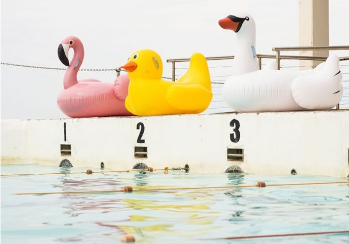 Floating drink holders, Floating drink holders flamingo, Floating drink holders duck, Floating drink holders palm tree, inflatable drink holders, inflatable flamingo, inflatable duck, inflatable unicorn, inflatable palm tree, inflatable donut, inflatable pizza, inflatable swan, inflatable ice cream, inflatable pretzel, Shark Fin Doggie Swim Vest, Dog Swim Vest, Pool party pong, beer pong in water, inflatable beer pong, pool golf, pool chest, inflatable paper crane, inflatable birds, Paper crane birds, floating tools, floating pool, floating pool items, floating pool tools, floating must haves, Travel Rumors
