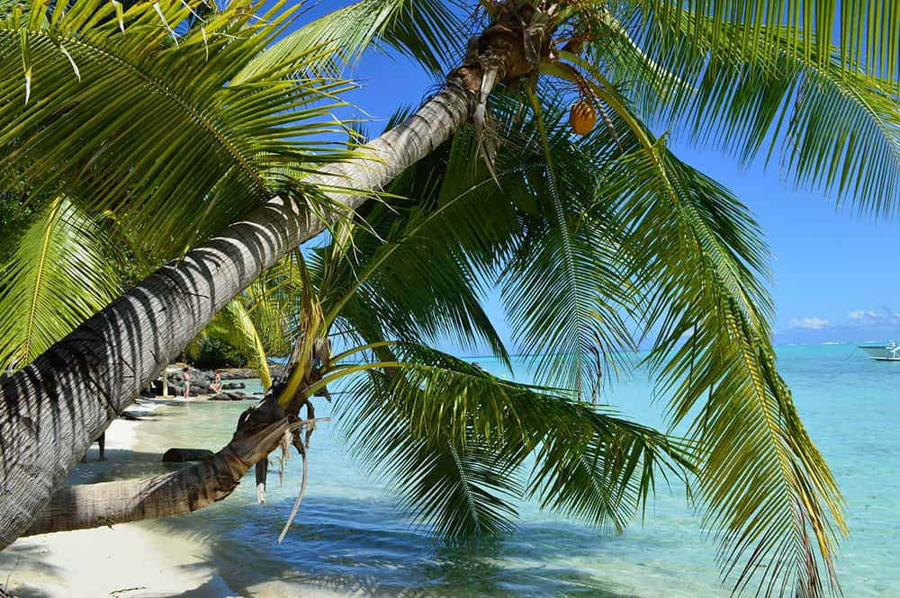 mooiste-bounty-eilanden-Bora-Bora