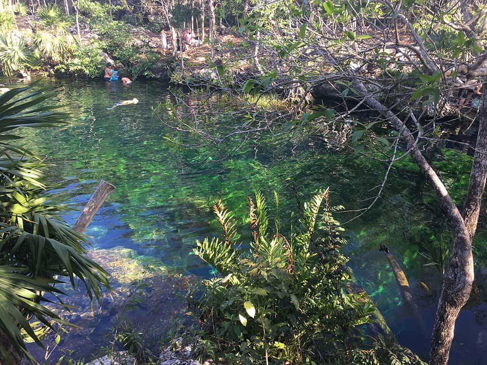 Cenote Jardin del Eden 2