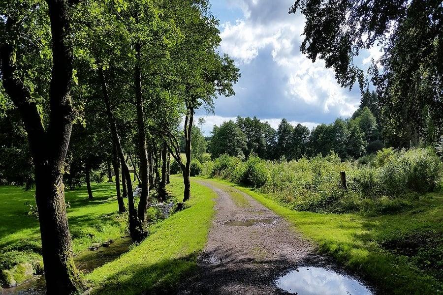 populaire-vakantiebestemming-voorjaar-belgie