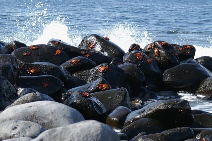 galapagos-eilanden-duurzaamste-bestemmingen
