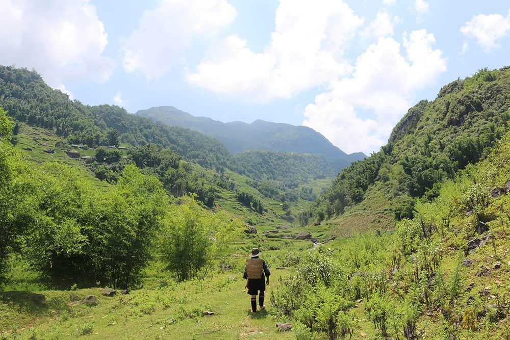 Sapa trekking Vietnam - rijstvelden 5