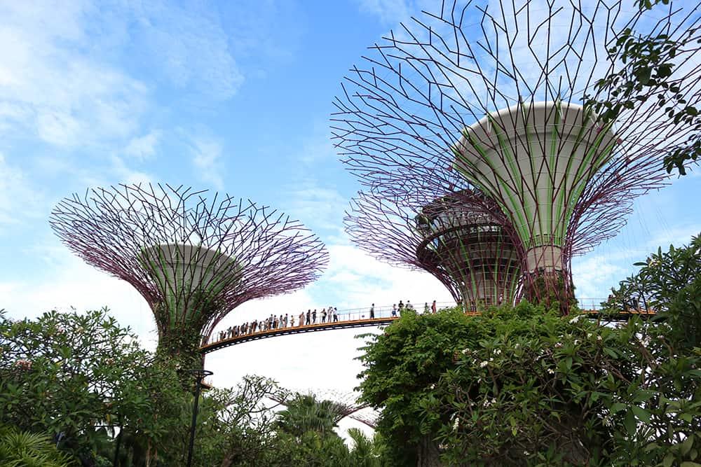 leukste activiteiten in Singapore 1