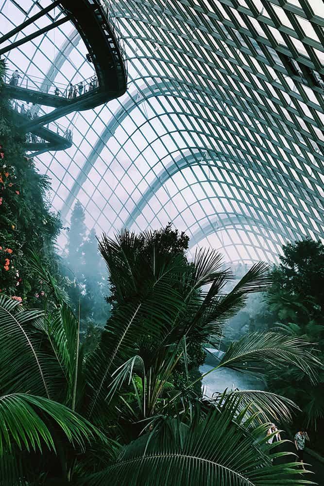 leukste activiteiten in Singapore 3