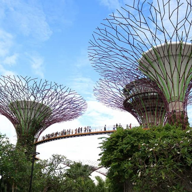 leukste-activiteiten-in-singapore