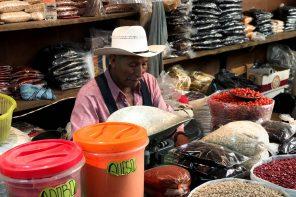 kook-cursus-san-cristobal-mexico