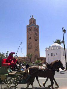 tour-door-Marrakech