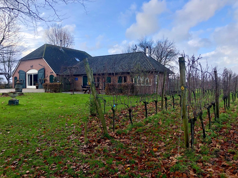 Hanzestad-Doesburg-Wijnboerderij-Heekenbroek